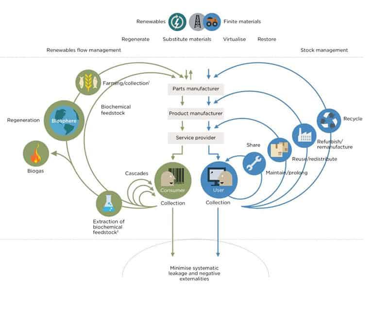 Ellen-Mac-Arthur-infographic-circular-economy